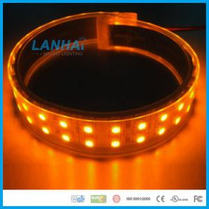 striscia calda 120LED/M dell'indicatore luminoso LED del nastro di 2 righe di 12V SMD 5050
