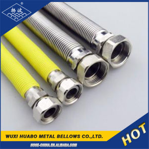 Yangbo Fabrik-Großverkauf-Flansch-Typ Gas-Schlauch