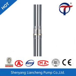 중국 수출 12V 24V 48V AC 관제사에서 건설되는 태양 수도 펌프 가격