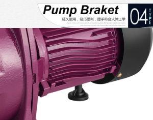 Chorro Jet Self-Priming Zheli serie bomba de agua bomba de agua eléctrica en China