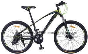 Mt26lt619 26pulgadas bicicleta MTB de bastidor de acero con la velocidad de 21