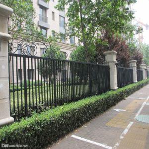 卸し売り及び低価格の黒色火薬は鋼鉄によって使用されたアルミニウム庭の塀、金属の塀のヤードのパネルを塗った