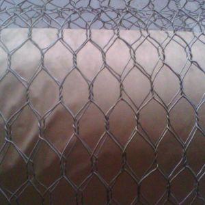 O hexagonal galvanizado Wire Mesh / Malha de frango / Compensação de aves de capoeira