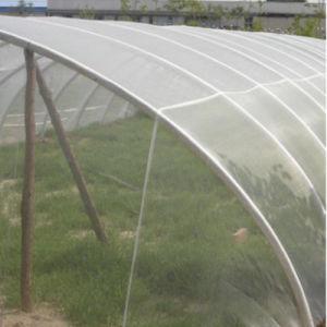 De HDPE Anti-Bird Agrícolas Anti-Insect Net/Rede