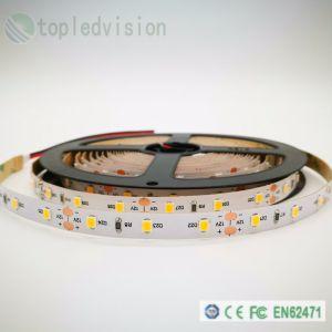 Iluminación Decoración 2835 TIRA TIRA DE LEDS 60LED 12W/M/M 5m/rollo