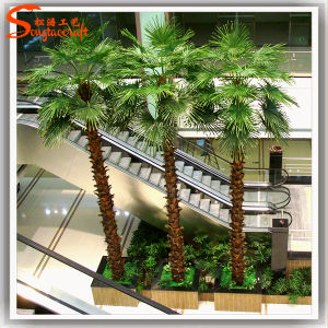 Jardim ornamentos decorativos Árvore de plantas de palma do Ventilador