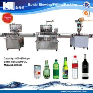 Ökonomischer linearer Kleinkapazitätstyp Getränkefüllende Zeile