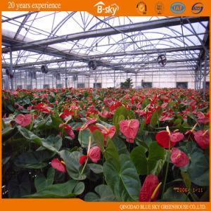Maison de jardin Film La plantation de fleurs de serre –Maison de ...