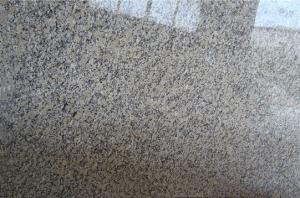 中国Giallo Fioritoの花こう岩の平板のタイル
