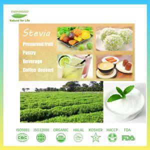 Low-Calorie edulcorante Stevia Natural para bebidas