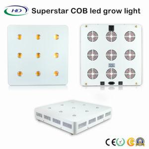 Superstar 9*200W LED de la Mazorca crece la luz con chips CREE