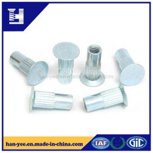 Le moletage de zinc en acier à tête plate de l'écrou à épaulement