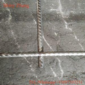 有効な建物によって溶接される金網のパネル