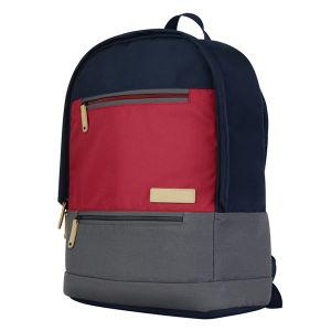 Знаменитый дизайн цвета нейлоновые сумки сумка для ноутбука рюкзак (FRT4-38)