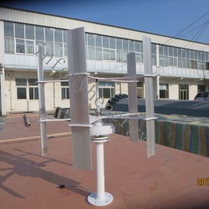 10W 20W 30W kleine vertikale Wind-Generator-Turbine für Verkauf