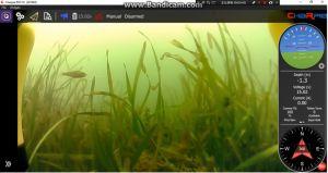 De onderwater het Duiken van de Robot Autonome OnderwaterCamera van de Metgezel