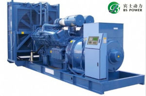 11kw/14kVA Groupe électrogène Diesel Perkins avec Alternateur Leroy Somer