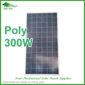 300W zonnePV van de Module /Solar van het Comité Comité met TUV