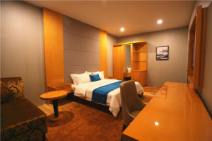 het vijfsterren Meubilair van de Slaapkamer van de Gast van de Gastvrijheid van de Grootte van de Koning van het Hotel van de Luxe Moderne (HD237)
