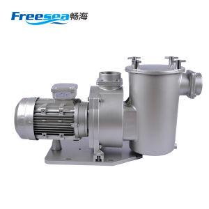 세륨 승인되는 강력한 380V 수영장 전기 수도 펌프
