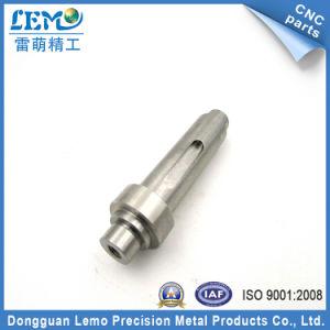 Ottone professionale di CNC della Cina/accoppiamento acciaio inossidabile (LM-0704Z)