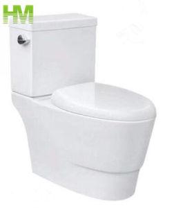 En Amérique du Sud Siphonic deux morceaux de bonne qualité de l'eau WC Toilettes / placard