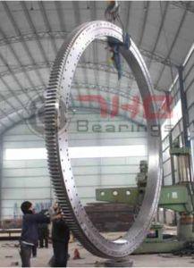 Самый большой и самый тяжелый поворотного кольца экспортированы в Европе по гавани краны