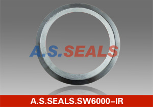 Junta da espiral (SW6000-IR)