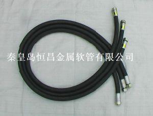 Assemblea di tubo flessibile di gomma ad alta pressione
