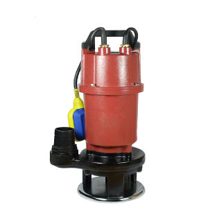 Pomp met duikvermogen (de Pomp van de Riolering) 550W-1100W