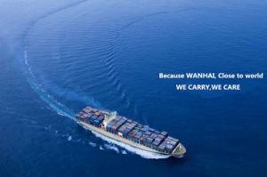 Service de logistique plus bas taux d'expédition de la Chine vers la Malaisie