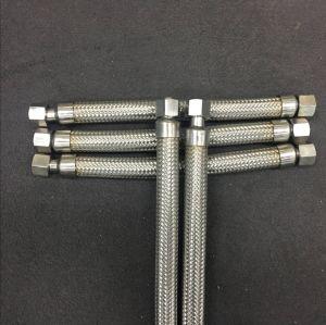 Tubo flessibile Braided del metallo con il montaggio femminile del NPT del maschio