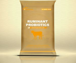 OEM de Bacil Vitamine van het Melkvee van de Opbrengst van het Dierenvoer van Probiotics de Bijkomende