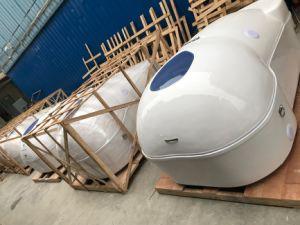 Flottement de la thérapie physique sain de l'eau d'Hydrothérapie massage SPA capsule