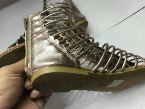 Les marchandises de haute qualité pour les femmes des sandales, les femmes/Dame de pantoufles. Les styles de mode pour les sandales, 6000paires