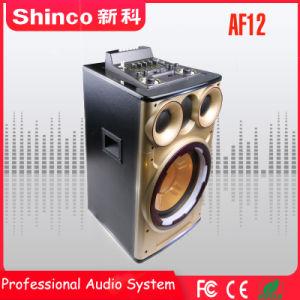 Shinco 12  Bluetoothの無線マルチメディアの実行中のPrefessionalのスピーカー