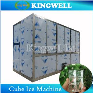 セリウム日の販売のための商業氷メーカーごとの4トン