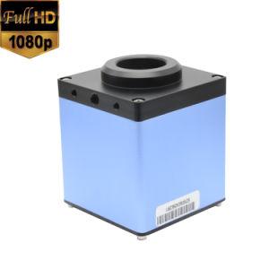 Microscopio del laboratorio di HDMI video con la funzione di memoria