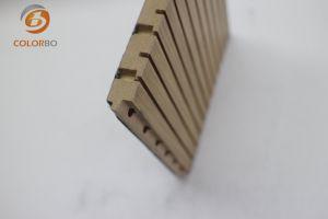 Comitato acustico del legname di legno per ginnastica G16-T3/13