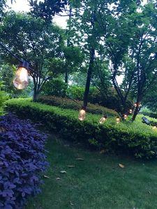 太陽エジソンストリング球根装飾のパスのホーム道の別荘のヤードの庭の工場販売法の低価格のための新しい屋外LEDの妖精のクリスマスエネルギーライト