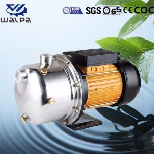 Jet de la pompe à eau pour le jardinage avec une haute qualité et meilleur prix