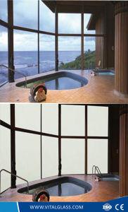 L'arte decorativa/ha macchiato/stampa verniciata/di ceramica//della giada matrice per serigrafia/glassato/feritoia/anti Refelctive/permutabile/blocco di vetro