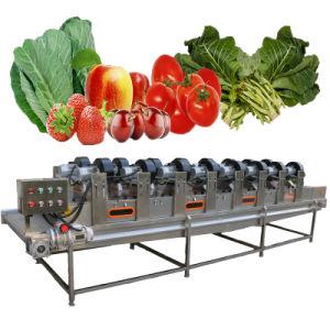 Обработка овощей линии