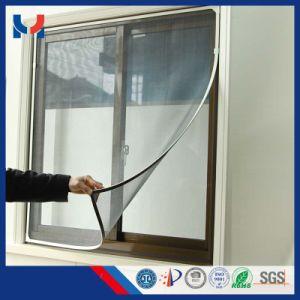 Fabricant de la magie verte de nouvelle conception de la fenêtre de l'écran