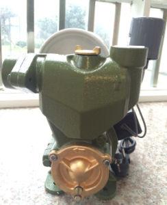 Electric 1périphérique Self-Priming awzb750kw Pompe à eau