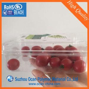 200micronプラスチック明確なボックス容器ペットシート