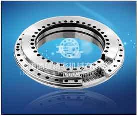 Hohes Precision Yrt50 Rotary Table Bearings für Combined Loads