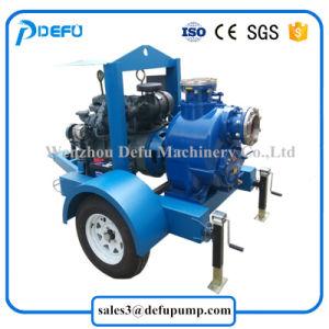 Pomp van de Instructie van de Dieselmotor van de Pomp van de Overdracht van de Olie van de riolering de Zelf