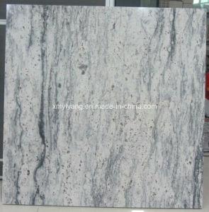 Plak en Countertop van het Graniet van de droom de Witte (kan Wit vervangen Kashmire)