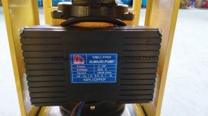 De elektrische Pomp van het Water 3kw, Enige Fase de Afzet van 2 Duim